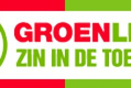 GroenLinks preparing pro-European campaign for Dutch elections