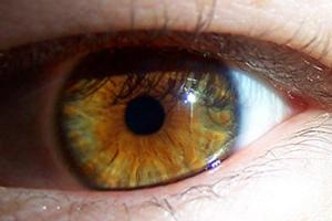 Eye - CC / Flickr